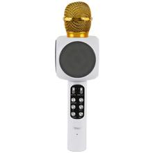 Multimedya Karaoke Mikrofon